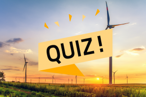 Renewable energy quiz